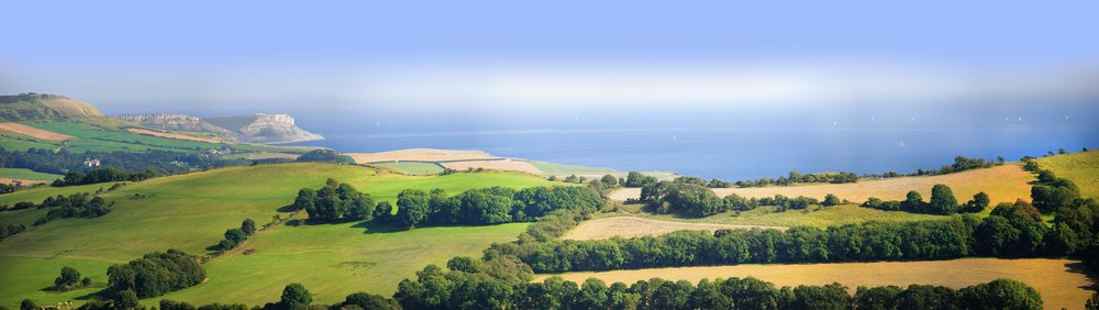 Buy Local to Support Businesses in Dorset